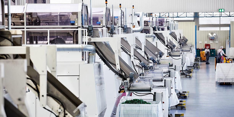 Maschinen zur Kunststoffverarbeitung bei der MEG in Roßbach